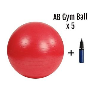 AB Gym Ball SETTI Ø 55 cm